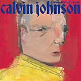 Songtexte von Calvin Johnson - A Wonderful Beast