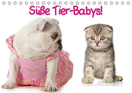 Süße Tier-Babys! (Tischkalender 2019 DIN A5 quer): Kleine Herzensbrecher für die ganze Familie (Monatskalender, 14 Seiten ) (CALVENDO Tiere)