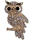 Amybria Lovely Black Eyes Full Crystal Gold Plated Owl Brooch and Pins for Women