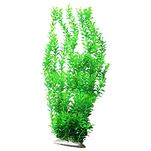 lush-blatter-aquarium-gras-pflanzendekoration-grun