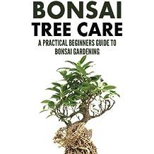 Bonsai Tree Care: A Practical Beginners Guide To Bonsai Gardening
