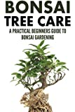 Bonsai Tree Care: A Practical Beginners Guide To Bonsai Gardening