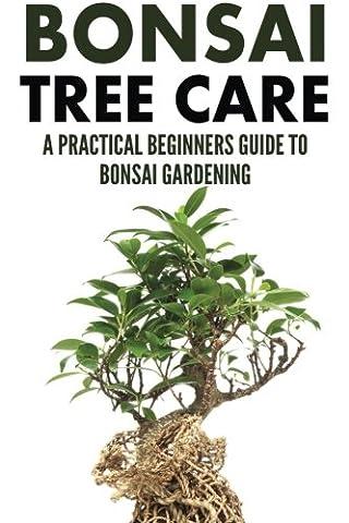 Bonsai Tree Care: A Practical Beginners Guide To Bonsai