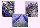 3 Stück Wandbild 3 er Set Bild mit Lavendel Motiven Bild auf Leinwand