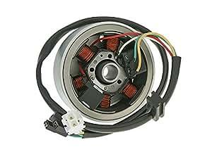 Allumage complet (stator et rotor) pour Derbi Senda