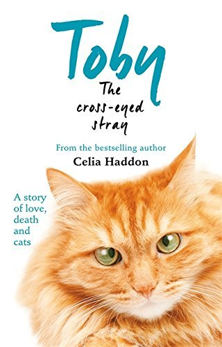 Toby The Cross-Eyed Stray by Celia Haddon (2015-03-02)