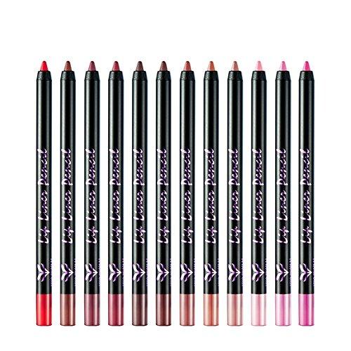Rouge à lèvres de stylo à lèvres longue durée de maquillage de lèvre d'esquisse facile pour les débutants professionnels 12pcs / ensemble