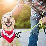 Hundeleine 5 FT Reflektierende Hundeleine mit Bequemen Gepolsterten Griff Trainingsleine mit Reflektierende Fäde Hundekotbeutel und Beutelspender Sicher Hunde Leine für Alle Größe Hunde bei Nacht