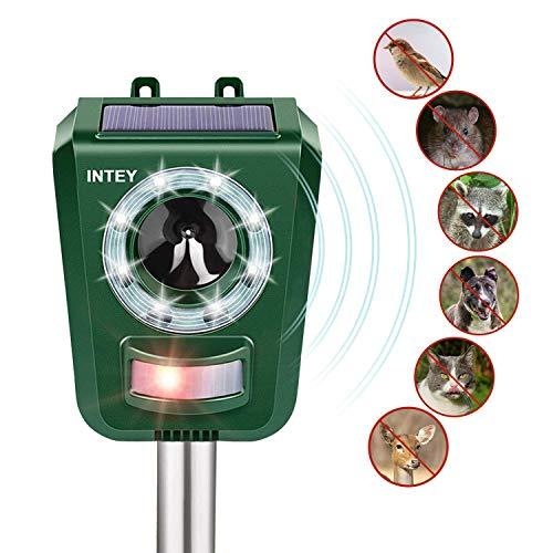 Intey repellente gatti ultrasuoni solare, per allontanare cani, gatti, uccelli frequenza regolabile impermeabile e con batteria a energia solare adatto agli ambienti aperti