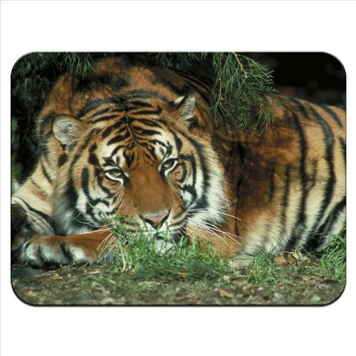 tiger-premium-quality-thick-rubber-mouse-mat-pad-soft-comfort-feel-finish