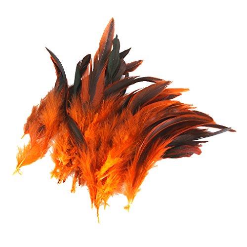 Hahnenfedern Flügelfedern Hahn Federn Pad Feather Schmuckfeder DIY Kostüm Feder Zimmerdeko - Orange (Diy Kostüme Für Mich)
