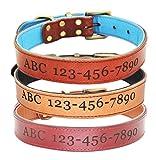 Maßgeschneiderte Lederhalsband, geschnitzten Hund Name und Telefonnummer, weiches Futter, robust und verstellbar, geeignet für Welpen, mittlere Hunde, große Hunde.