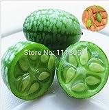 30pcs verdure e semi di frutta Mini anguria Sementi gusto come cetrioli Bonsai piante Semi per la casa e giardino
