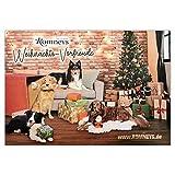 Romney's Adventskalender für Hunde | 24 Türchen mit Leckerchen | Leckere Snacks für die Vor-Weihnachtszeit und Adventszeit | Ideal als Geschenkidee unter Hundefreunden
