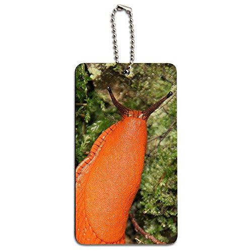 grand-orange-limace-escargot-en-bois-mollusk-carte-tiquette-didentification-bagage-valise-cabine