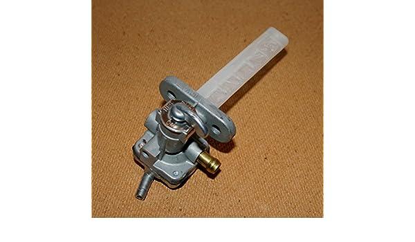 Micro-pompe submersible et amphibie /à courant continu Pompe /à eau 3V 120L H /à faible bruit-blanc
