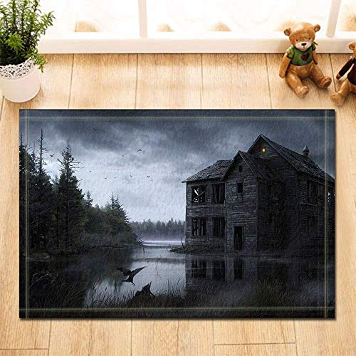 WENHUI Fußmatte für den Innenbereich/den Eingangstürmatte für Kinder, Grau/Himmel, Holz, Wasser/See, Wasser/Haus, Vögel, rutschfest, 39,9 x 59,9 cm