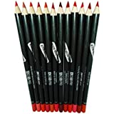 ADS Pro Photo Finish Large Size Lip Liner Pencil Set of 12 with Sharpeners