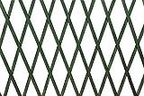 VERDELOOK Traliccio Estensibile in Legno Verde Dimensioni 100x300 cm, Decorazioni terrazza