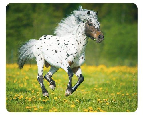 moisissures-au-galop-iert-sur-prairie-tapis-de-souris-motif-80-chevaux-de-qualite-tapis-en-caoutchou