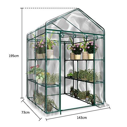 Wasserdicht Foliengewächshaus Gewächshaus aus PVC Treibhaus Pflanzen 143cmx73cmx195cm UV-Schutz Wärmehaltung für Frühbeet, Tomatenhaus, Gemüse Ohne Eisenregal