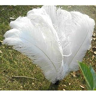 Leayao - Plumes d'Autruche teintées - Accessoire pour vêtements, Blanc, 50-55cm