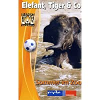 Elefant, Tiger & Co. - Teil 6