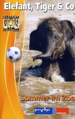 Preisvergleich Produktbild Elefant,  Tiger & Co. - Teil 6 [VHS]