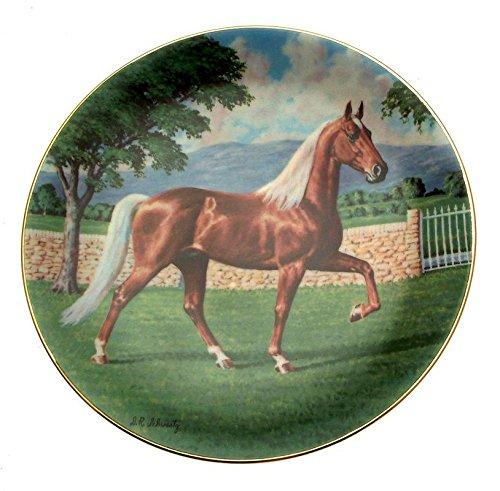 Pferd Teller Der Tennessee Walker Wasserspeier Pferde der amercas Donald Schwartz