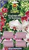 Compo 1197802004 Düngestäbchen für Orchideen, 20 Stück