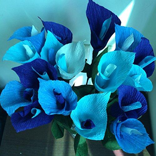 Doubleer 100 Pcs Mixte Couleur Calla Lily Graines Plantes De Fleurs
