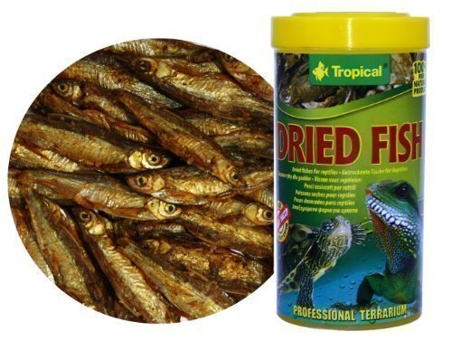 Dried-Fishes-100-natural-food-for-Reptiles-Turtles-and-Large-Aquarium-Fishes-from-Tropical-100ml
