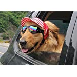 Crasy Shop Stripe Canvas Pet Dog Sun Hat Adjustable Sports Baseball Cap with Ear Holes for Puppy Dog Cat (S, Blue) 7