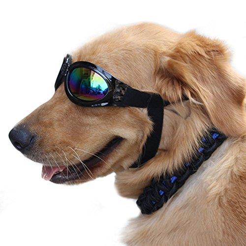 Gafas para perro proteccion UV ni rayos solares ni nieve ni viento dañarán sus ojos de OPEN BUY