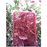 Pcmoviles -- funda Gel silicona tpu liso color Rosa transparente para Alcatel one touch POP D5