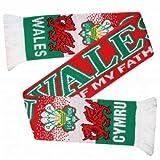 Wales flagge teppichDurch Fußball Schal