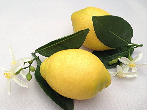 Künstliche Zitronen Wie Echt Küche Deko Obstschale Home Obst Küchendeko Restaurant Dekor Sommer ()