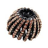 Sharplace 2 x Acryl Doppelreihen Pferdeschwanz Halter Haarspangen Haarteile - Geschenk - Champagner1