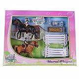 Van Manen Kids Globe Farming Pferdespielset, mit 2 Pferde und 2 Reiter, Set für Reiterhof, für Mädchen, mit Zubehör, 640072, Mehrfarbig
