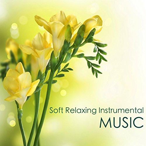 Relaxing Sleep Music to Beat I...