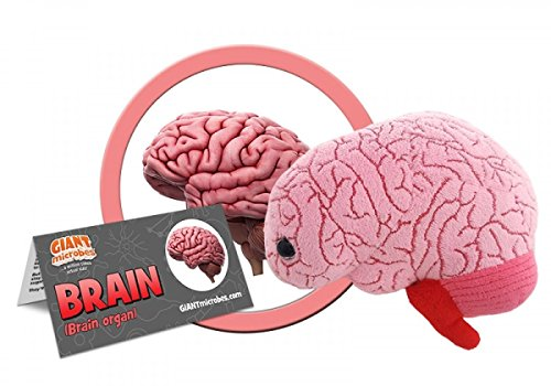 GIANTmicrobes Brain Organ Plush Toy