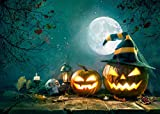 SEWORLD Halloween Backdrops Kürbis Vinyl 5x3FT Laterne Hintergrund Fotografie(C,150x90cm)