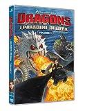 Dragons: I Paladini di Berk - Volume 1 (DVD)