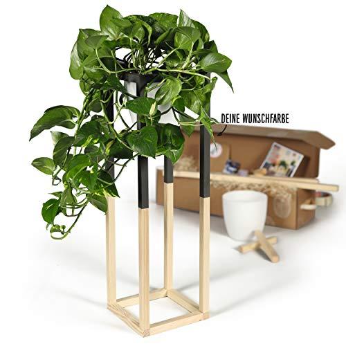 CREATE! by OBI DIY Pflanzständer, groß | Dekorativer Pflanzenständer aus Holz zum Selberbauen (HINWEIS: Farbe im Set nicht enthalten)