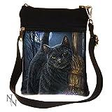 Ein Pinsel mit Magick - Katze mit Besen Umhängetasche Multicolours - Fantasy - Nemesis Now