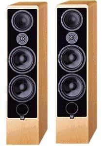 canton ergo rc l paire d 39 enceintes sur pied en bois de h tre audio hifi. Black Bedroom Furniture Sets. Home Design Ideas