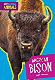 Best American Science y naturalezas - American Bison (North American Animals) Review