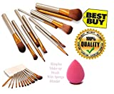 #8: SKINPLUS Professional Cosmetics Makeup Brush In Durable Box, Set of 12 With Sponge Puff