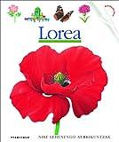 Lorea (Nire lehen aurkikuntzak)