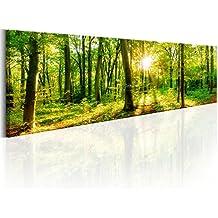 murando Cuadro en Lienzo XXL 135x45 cm Impresion en calidad fotografica - Cuadro en lienzo tejido-no tejido - Naturaleza Bosque Panorama c-B-0184-b-a 135x45 cm